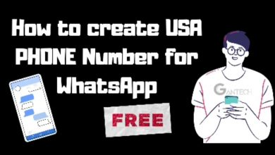USA number for Whatsap